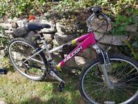 Girls Raleigh mountain bike. 18inch, 18 gears, Excellent condition, hardly used. x