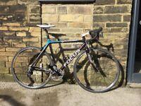 Focus cayo 54cm Carbon road bike