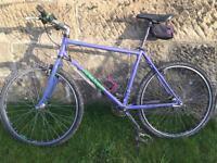 Retro Raleigh Mountain Bike Frame (Project)