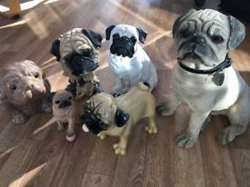 Large pug figurines / statues
