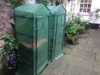 Two plastic greenhouses