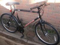Coventry Eagle Amazon Mountain Bike XL