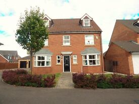 6 Bedroom Property available for £1,250 pcm
