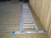 Triple Ext Ladders