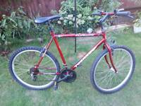 Mans mountain bike one of many quality bicycles for sale