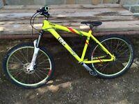 Ragley Marley Full Size Mountain Bike