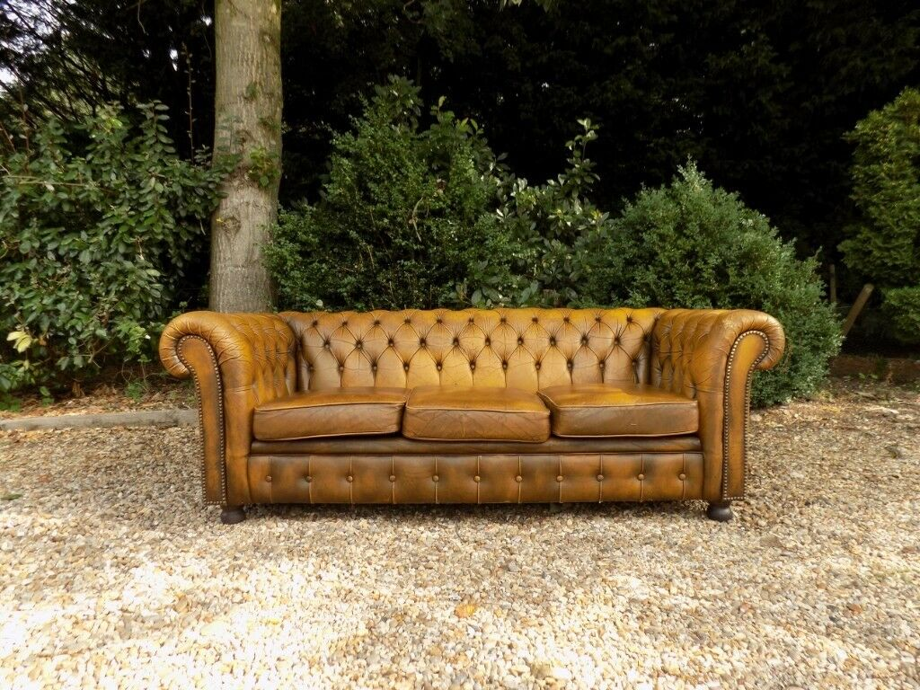 Vintage Retro Brown Yellow Leather Chesterfield 3 Seater Sofa In Norwich Norfolk Gumtree