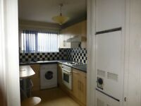 Unfurnished large 2 bedroom flat for rent