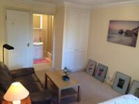 spacious doulbe room available on the 1st Feburary for one single mature professional