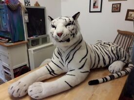 Gorgeous 4 foot cuddly white Tiger