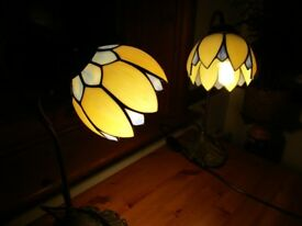 Pair of Tiffany style swan neck lamps