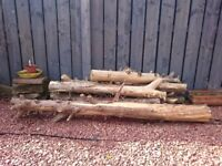 Timber for logs