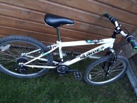 Boys Slayer 18 Gear Mountain Bike in White