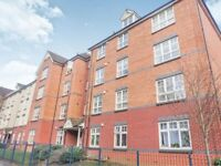 3 bedroom fully furnished flat in Beckets View
