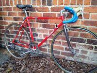 Vintage Raleigh Reynolds 501 Road Racing Bike Serviced