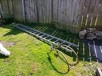 Roof ladder and hook