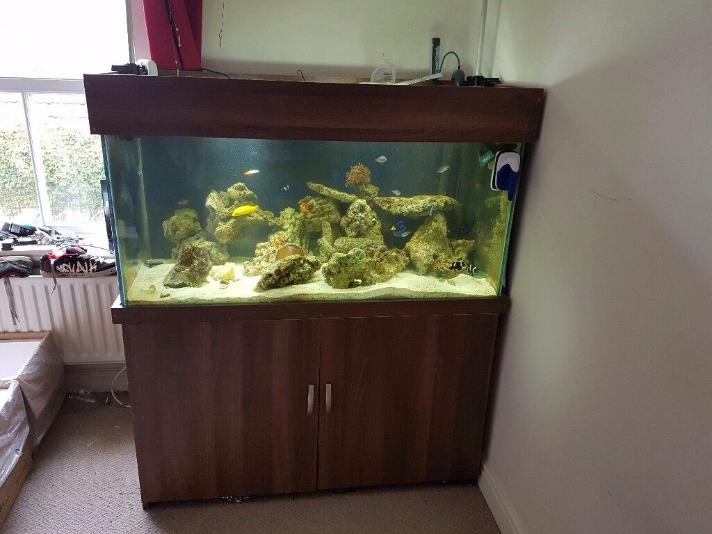 4x2x2 fish tank with stand and sump with return pump