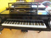 Restored Blüthner Grand Piano