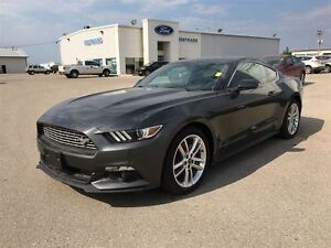 2016 Ford Mustang EcoBoost Premium 6 speed automatic