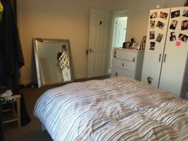 Doble bedroom to rent in Barton hill