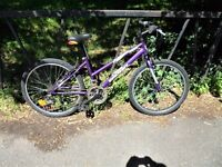"24"" Wheel Girls Mountain Bike Bicycle. Fully Serviced, Ready To Ride & Guaranteed. 15"" Frame"