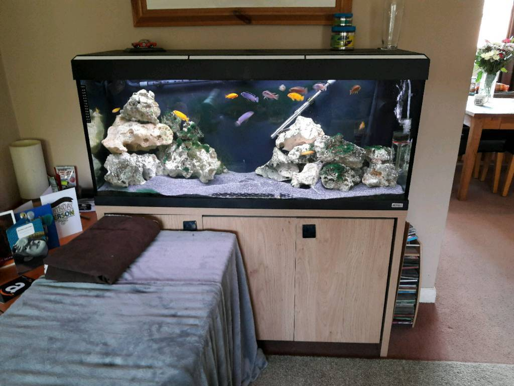 4ft fish tank aquarium large   in Southampton, Hampshire ...