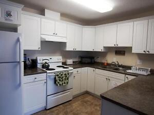 *FEB FREE* 2 Bdrm in Family Bldg w/ Elevator & Suite Laundry