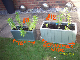 NOW REDUCED.2 METAL TROUGHS WITH MINT,LARGE PLASTIC POT -ROSEMARY &OTHER HERBS. ALL FRESH COMPOST