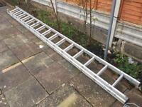 15 steps each extendible ladder Ladder