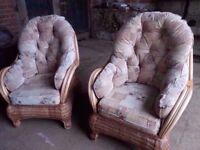 Two Gilda Cushioned Conservatory Chairs