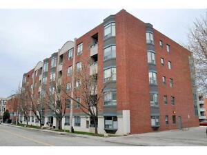 306 5 Ogilvie Street Dundas, Ontario
