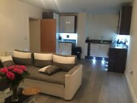 double room with en-suite in two bedroom flat £675pcm