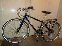 Jamis ( commuter 1 ) carbon steel ladies hybrid bike