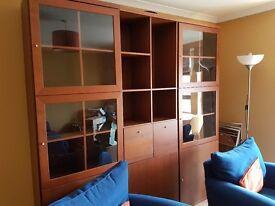 Beautiful Livingroom units
