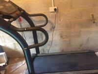 Ultim 8 large treadmill