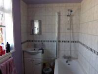 Bath,shower head, shower door