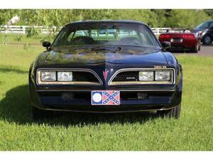 1977 Pontiac Firebird Bandit Special Edition