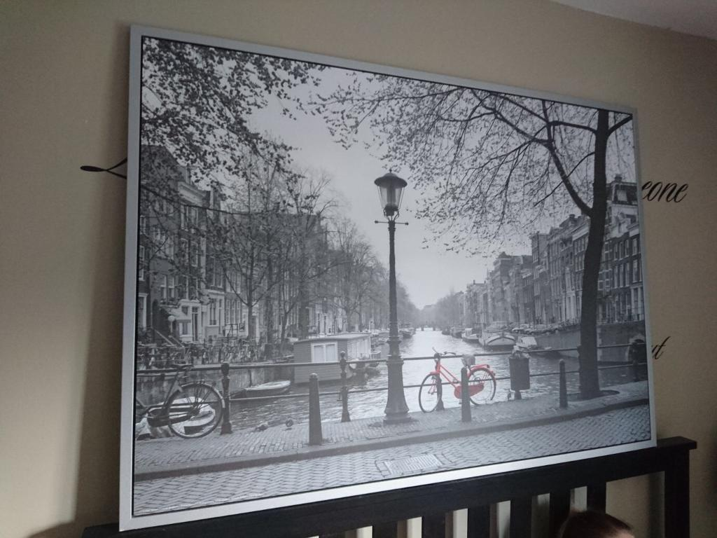 very large framed picture 55