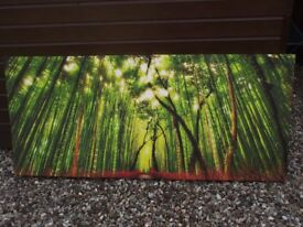 Large Canvas Art 2 x Woodland Scenes