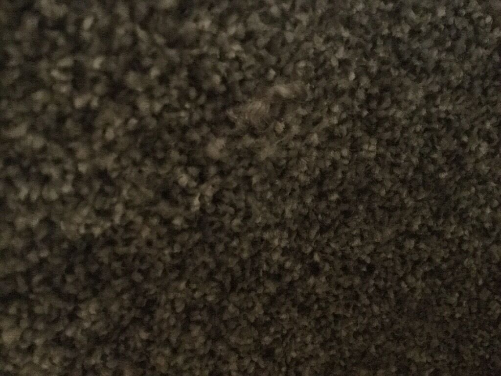 2m x 3m Mid grey CARPETin Southside, GlasgowGumtree - 2m x 3m grey carpet Nice thick pile. Mid grey colour, the photo makes it look darker than it is Cost £20 per square meter. Looking for £30 ono
