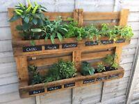 Planter, Herbs, Flowers, Herb Rack, Flower Pot,Reclaimed Pallet Wood