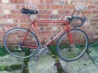 """Holdsworth Steel Frame Road Bike Suit 5'9"""""""