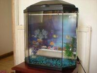 Aquarium fish tank with built in light