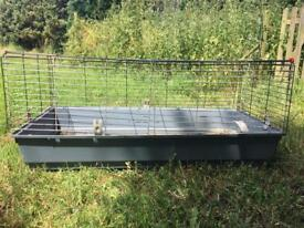 Cage rabbit guinea pig