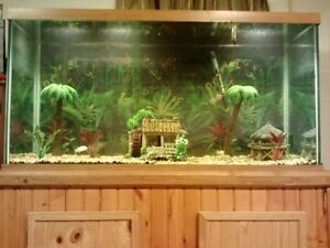 Details about 100 Gallon Fish Tank Aquarium