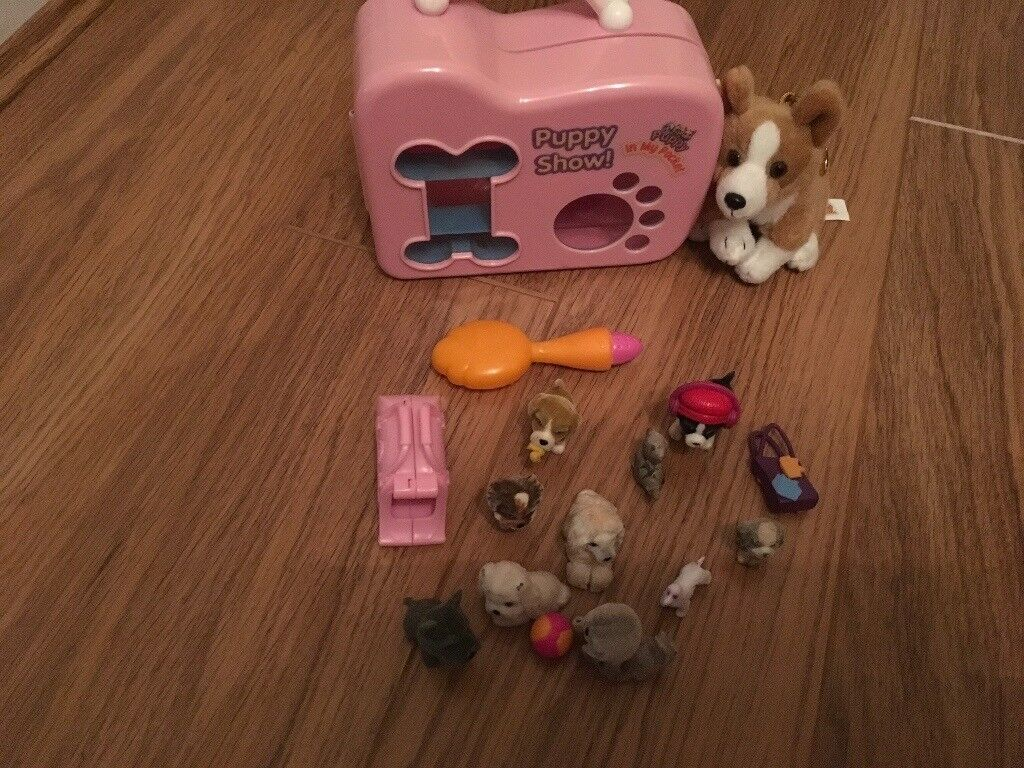 Puppy show carrying case