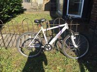 Hybrid Bicycle (Apollo Jewel) 17 inch frame