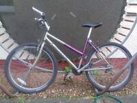 ADULT MOUNTAIN BIKE SIZE 18 INCH. CARRERA MAKE. NEW TYRES. GEARS NEED ADJUSTING . GOOD CONDITION.