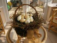 Birds nest novelty