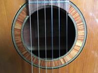Framus 1960s classical guitar